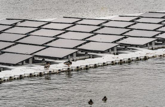 Rotterdam, 17 mei 2019  Artikel over het recent gestarte Floating Farm aan de Doklaan nummer 10  Met initiatiefneemster Minke van Wingerden