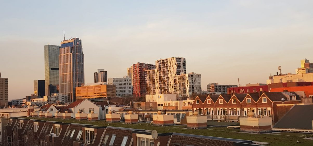 Groen dak Gaffel Noord en Zuid_2