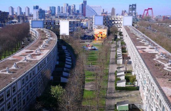 Primeur Peperklip heeft langste natuurdak van Nederland_header